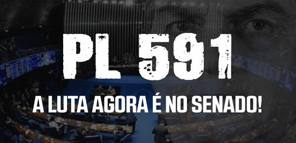 FINDECT DESMENTE MENTIRAS DIVULGADAS PELO GOVERNO BOLSONARO EM PROPAGANDAS COM DINHEIRO PÚBLICO NA TV